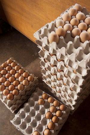 fresh eggs sellig at traditional shop in malaysia