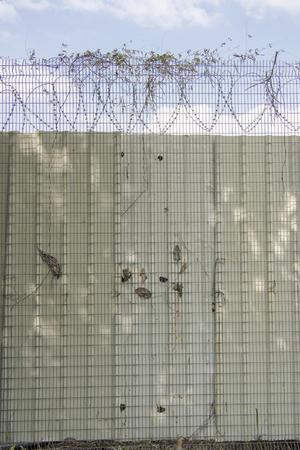 barbed wire against blue sky Standard-Bild