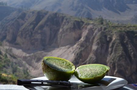Green Cactus Pear, Colca Canyon