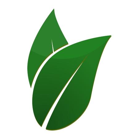 single flower: Leaf Sign - illustration