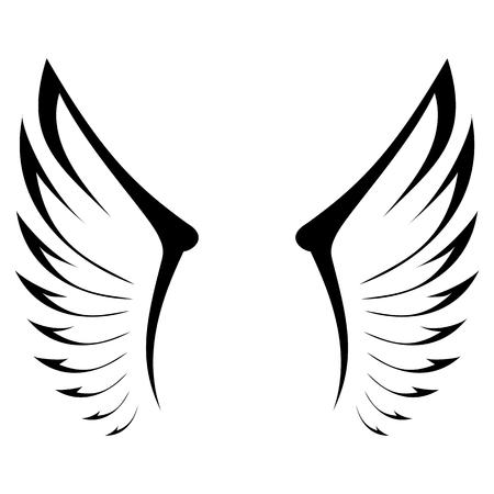 wings bird: Eagles Wings - illustration Illustration