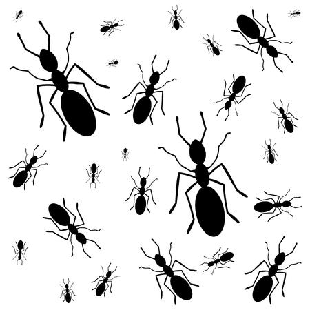 everywhere: Ants everywhere - illustration