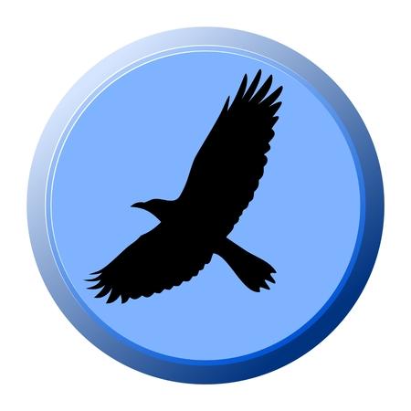 Crow Blue Button - Illustration