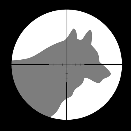 gun sight: Hunting Season with Wolf in gun sight
