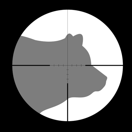 gun sight: Hunting Season with Bear in gun sight Illustration