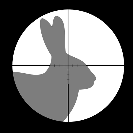 gun sight: Hunting Season with Rabbit in gun sight