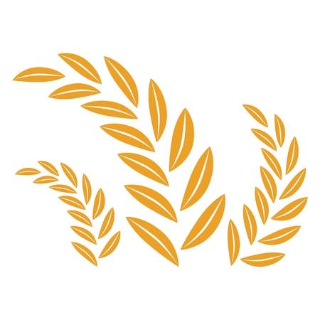 oat field: Illustration of wheat Illustration
