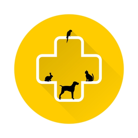 veterinary icon: Veterinary icon with medicine symbol with long shadow