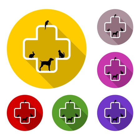 cat call: Veterinary icon with medicine symbol with long shadow set