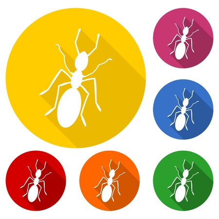 pismire: Ant icon with long shadow set