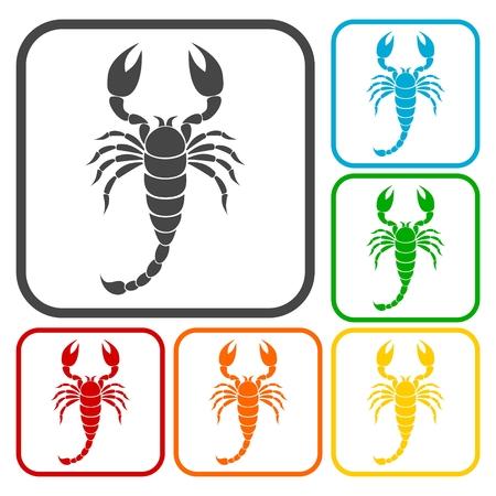 predatory insect: Scorpion icons set
