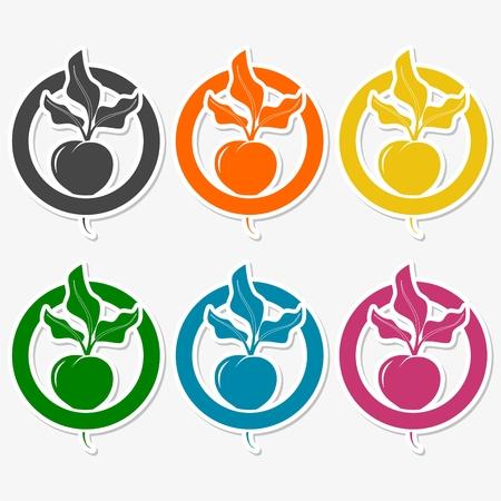remolacha: pegatinas de remolacha establecen
