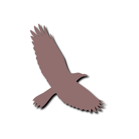 swooping: Crow icon