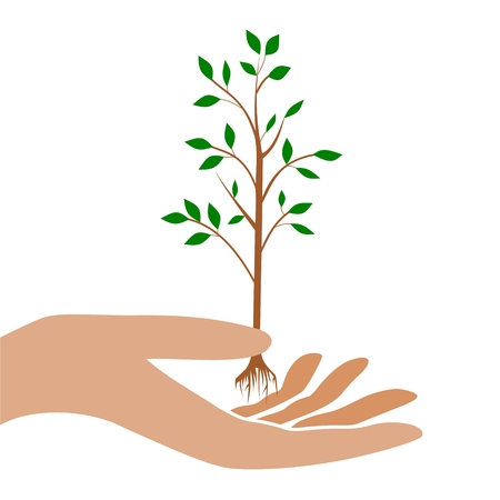 tree: Hand icon with tree