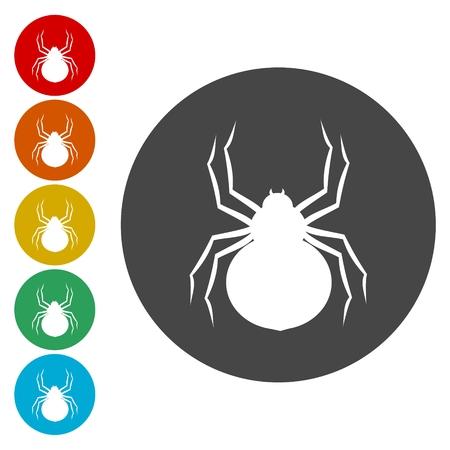 latrodectus: Spider Circle Icon. Flat Design Vector Illustration Illustration