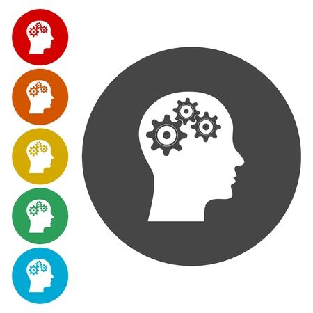 Head and Brain Gears in Progress
