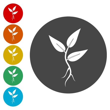 Plant vector icon. Style is flat rounded symbol