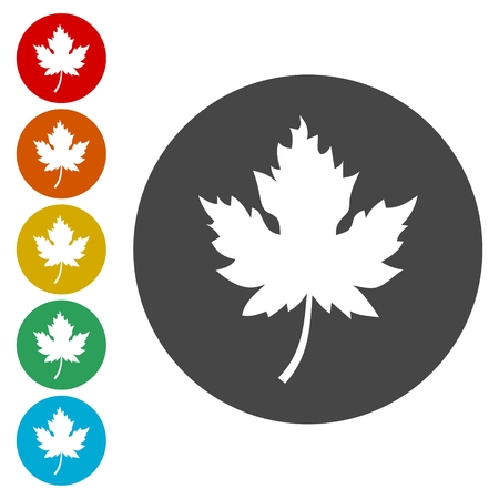 A Vector Canadian maple leaf roundel icon