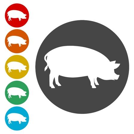 porcine: Silhouette of pig icons set