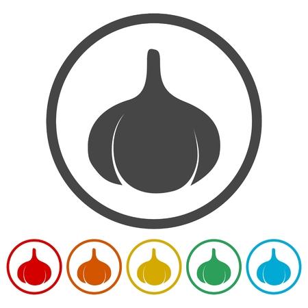 Garlic icons set Illustration
