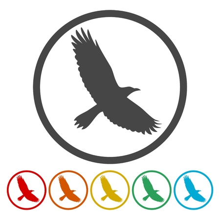 Crow icons set