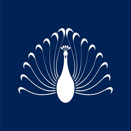uncultivated: Peacock - vector Illustration