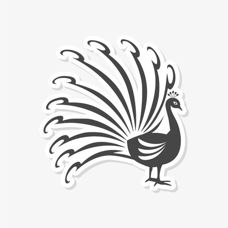 uncultivated: Peacock - vector Illustration icon