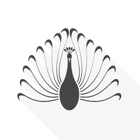 Illustration of bird with long big beautiful tail.