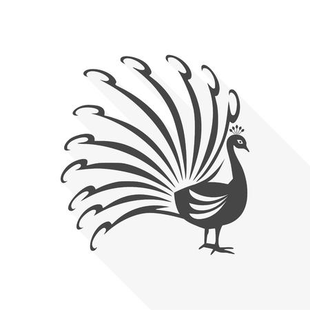 Stylized bird with big beautiful long tail clip-art design illustration.