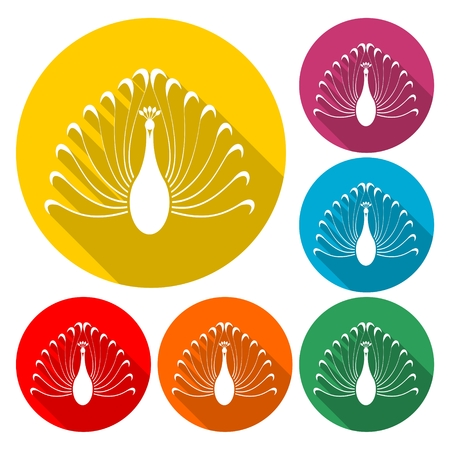 Bird with big beautiful long tail icon set, design illustration.