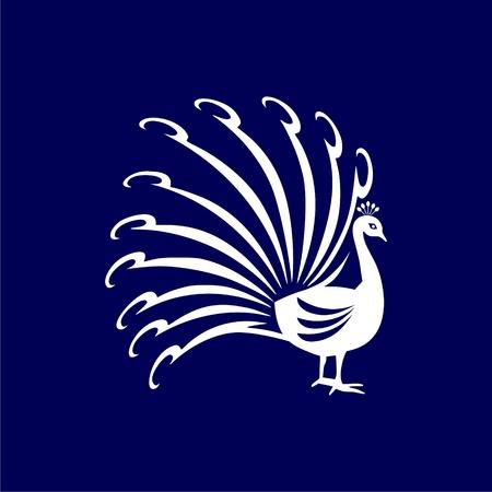 Bird with big beautiful long tail icon, design illustration. Ilustração