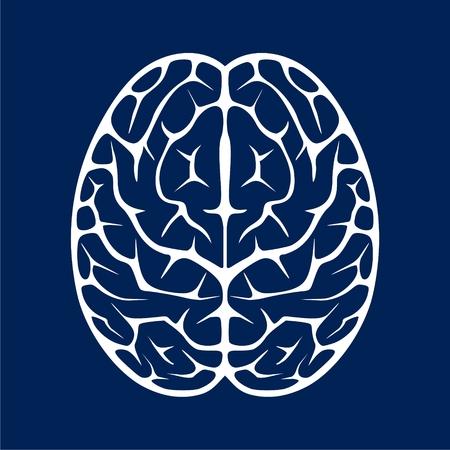 Human brain icon - vector Illustration Illustration
