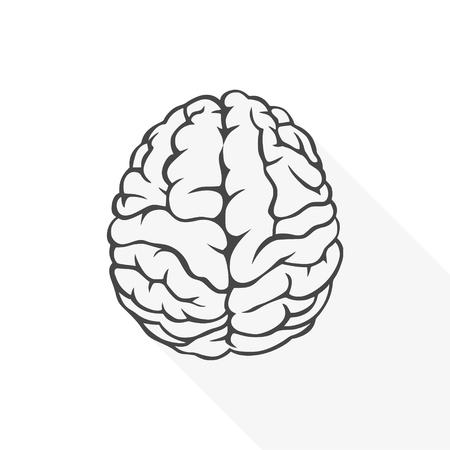 Human brain icon.