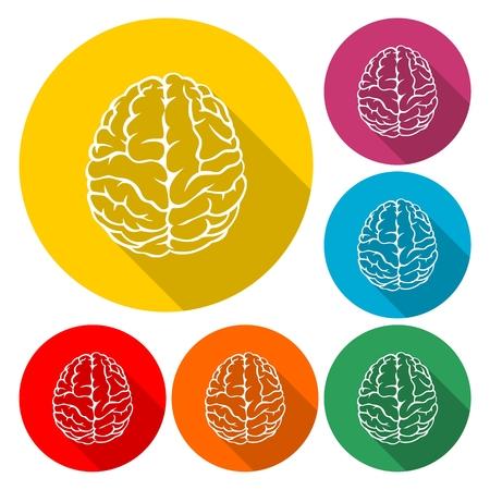 Human brain icon - vector Illustration with long shadow Illustration