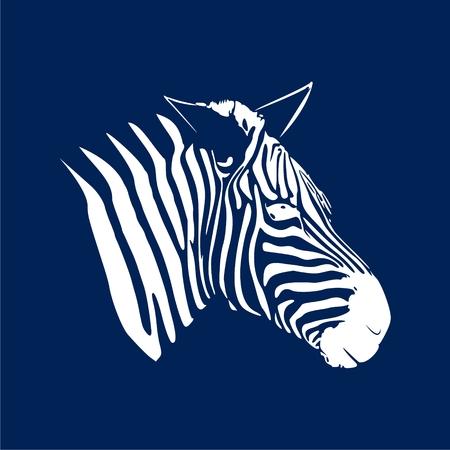 Zebra icon on blue background, vector illustration.