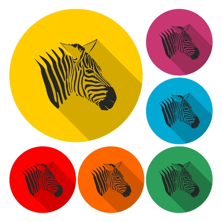 Zebra icon - vector Illustration with long shadow Illustration