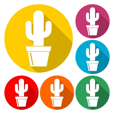 mexican ethnicity: Cactus Collection Vector - Illustration Illustration