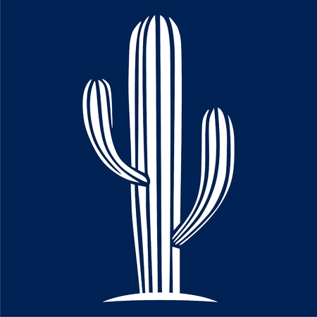 Cactus icon  vector illustration.