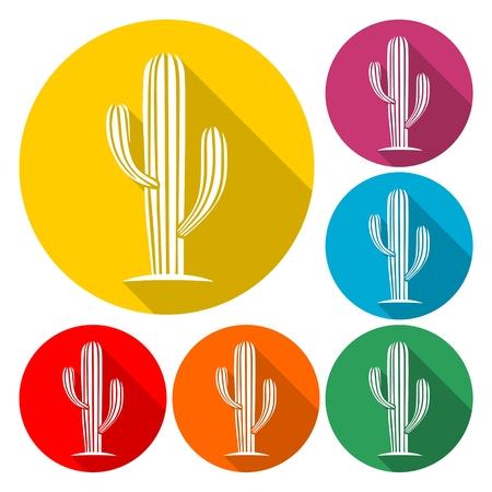 Cactus icon vector Illustration