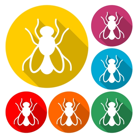 Housefly icon, Fly icon - Illustration