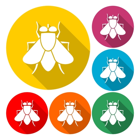 Fly insect icon - Illustration