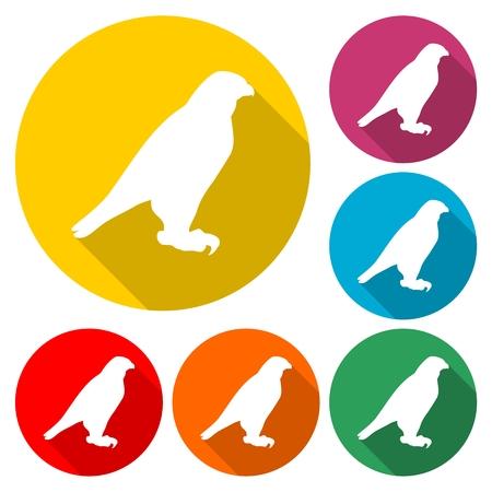 Falcon bird icon