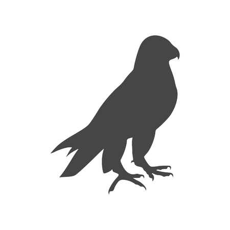 Falcon icon - Illustration