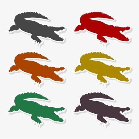 Crocodile - Illustration