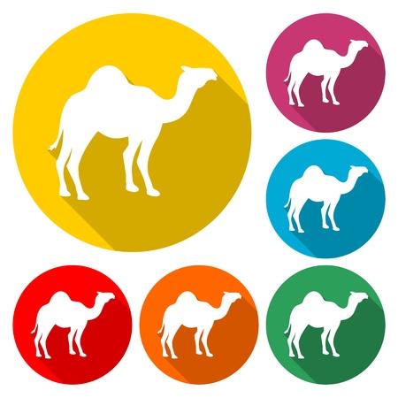 Camel Icon Flat Graphic Design - Illustration Illustration