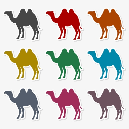 Camel silhouette vector icon Illustration.