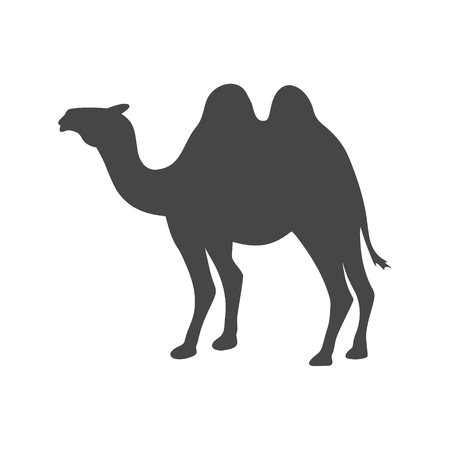 Camel silhouette vector icon - Illustration Illustration