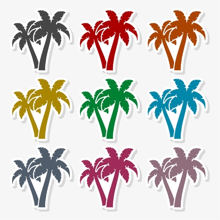 Palm tree Illustration