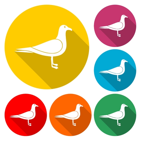 Seagull Silhouette - Illustration Illustration