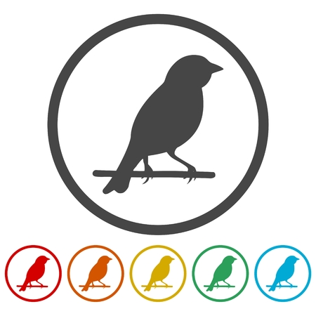 Birds icon - vector Illustration Illustration